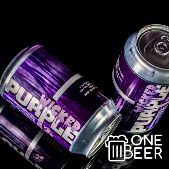 HopTop Wicked Purple 0,33l